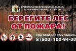 Указом Дмитрия Миронова на землях лесного фонда введен особый противопожарный режим